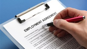 Employment and OHS Law